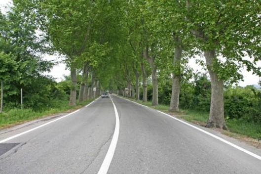 La_route_nationale_86_à_la_sortie_de_Lamotte-du-Rhône_by_JM_Rosier-720x480